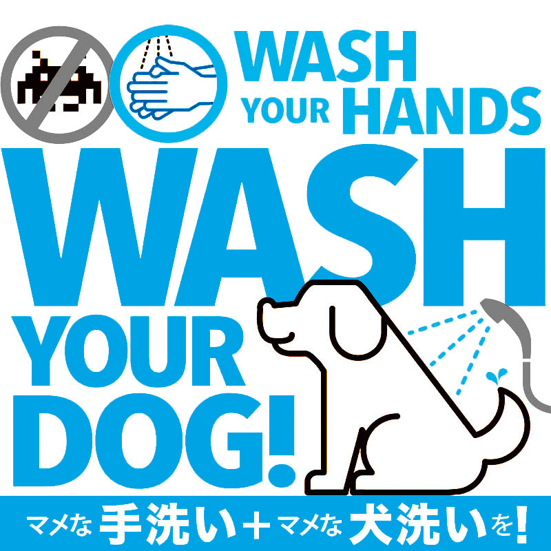 WASH YOUR DOG